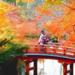 Japan fall foliage forecast 2019 — Where to see autumn leaves in Japan & 42 best autumn spots in Japan