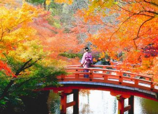 1best place to see autumn leaves in japan,best autumn spots in japan