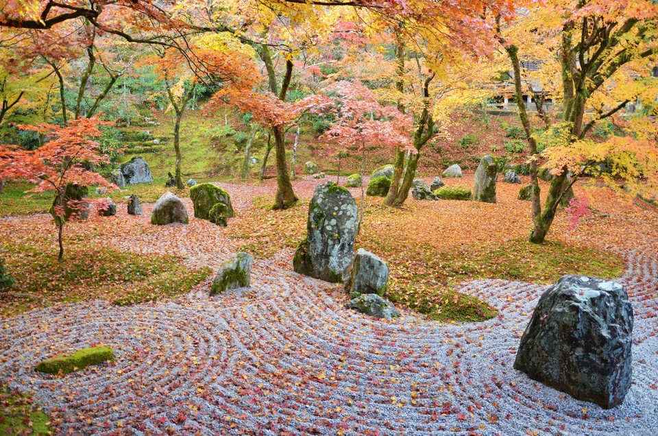 49 - Komyozenji Temple - The Beauty of Japanese Autumn
