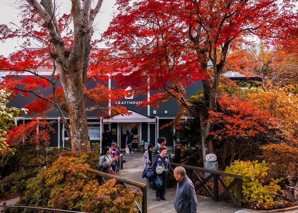 Hakone autumn3