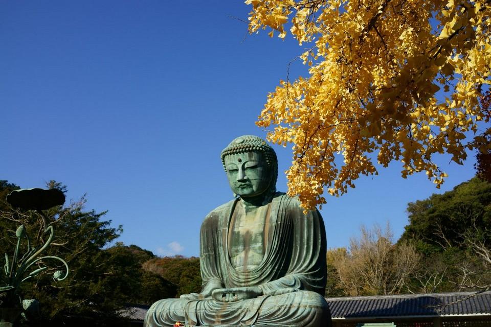 Kamakura autumn (1)
