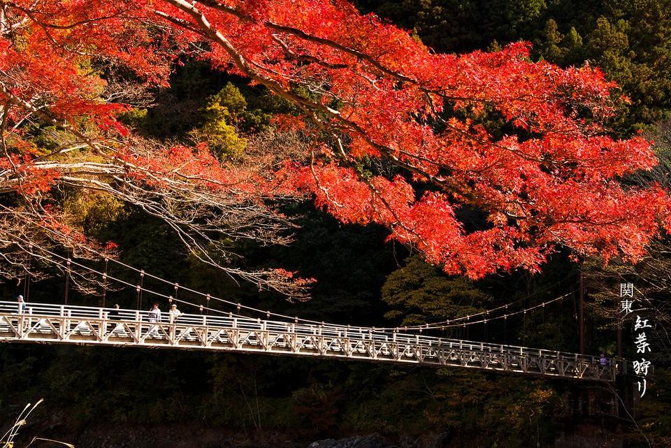 Shosenkyo Gorge autumn (1)