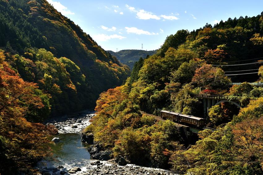 Watarase Keikoku Railway autumn (1)