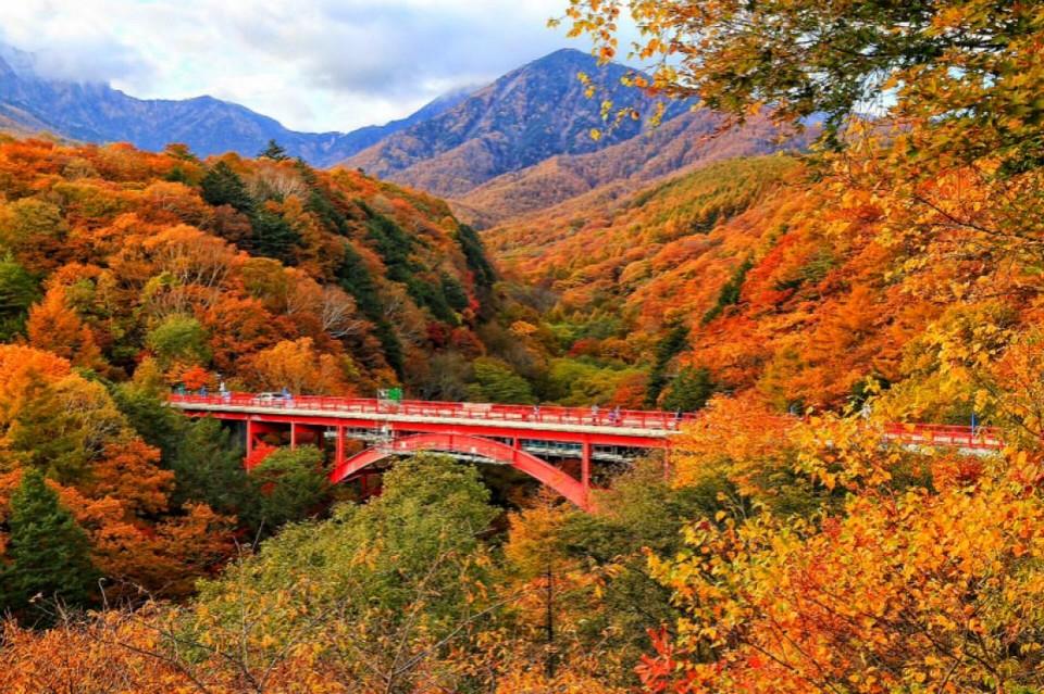 Yatsugatake Chushin-Kogen Quasi-National Park (1)