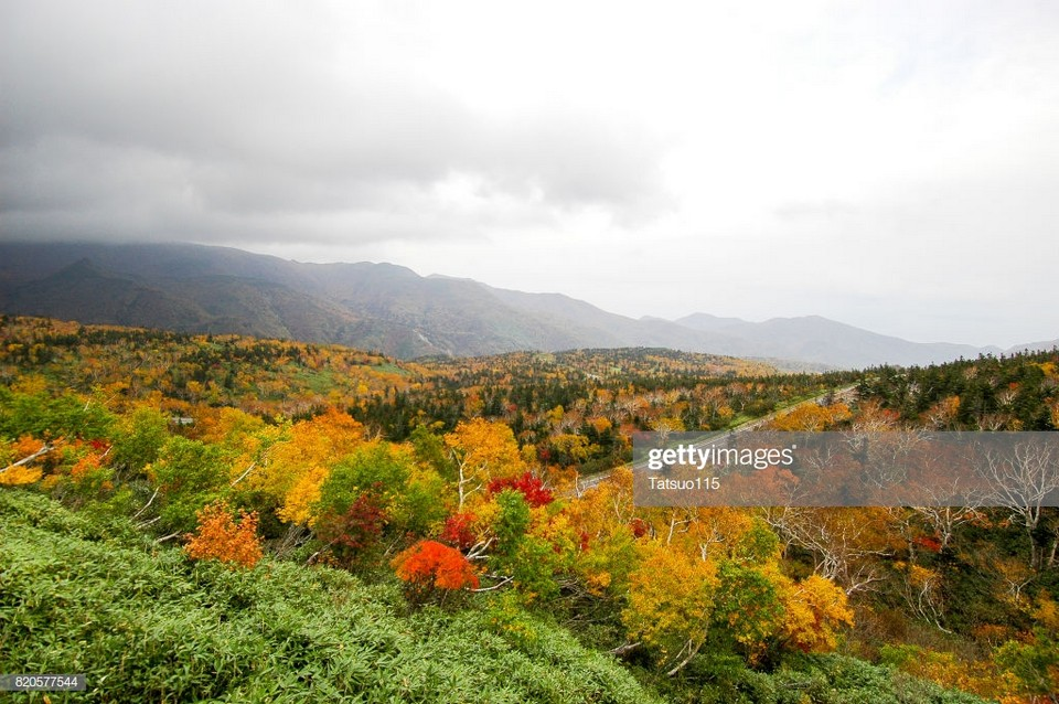 Shiretoko National Park autumn (1)