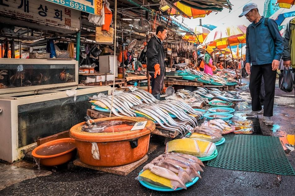 Jagalchi Fish Market busan market (1)