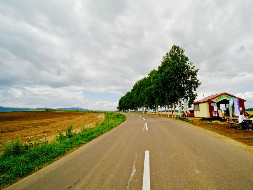 bieis-landscape