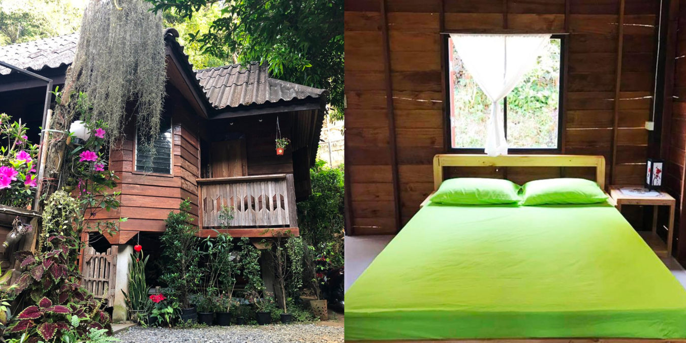 2Kampong Coffee and Homestay,best hostels in chiang mai,cheap homestay in chiang mai,top hostels in chiang mai (1)