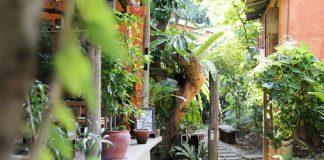 Baannoi Nornmuan Home chiang mai thailand