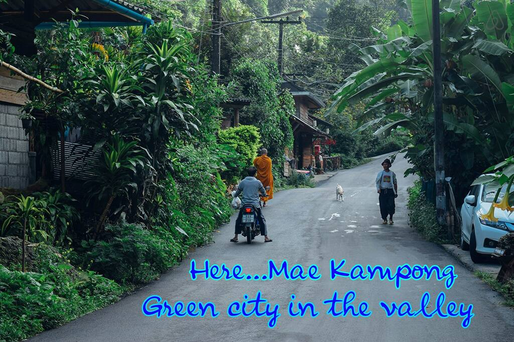 Kampong Coffee and Homestay,best hostels in chiang mai,cheap homestay in chiang mai,top hostels in chiang mai (1)