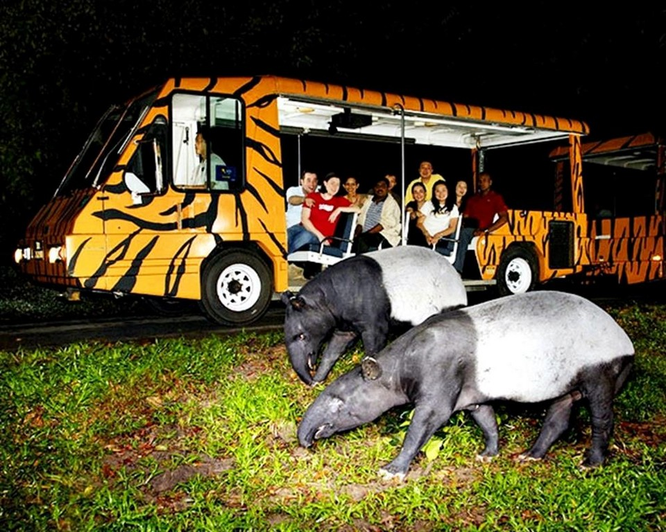 Top places to visit in Chiang Mai Chiang Mai Night Safari (1)