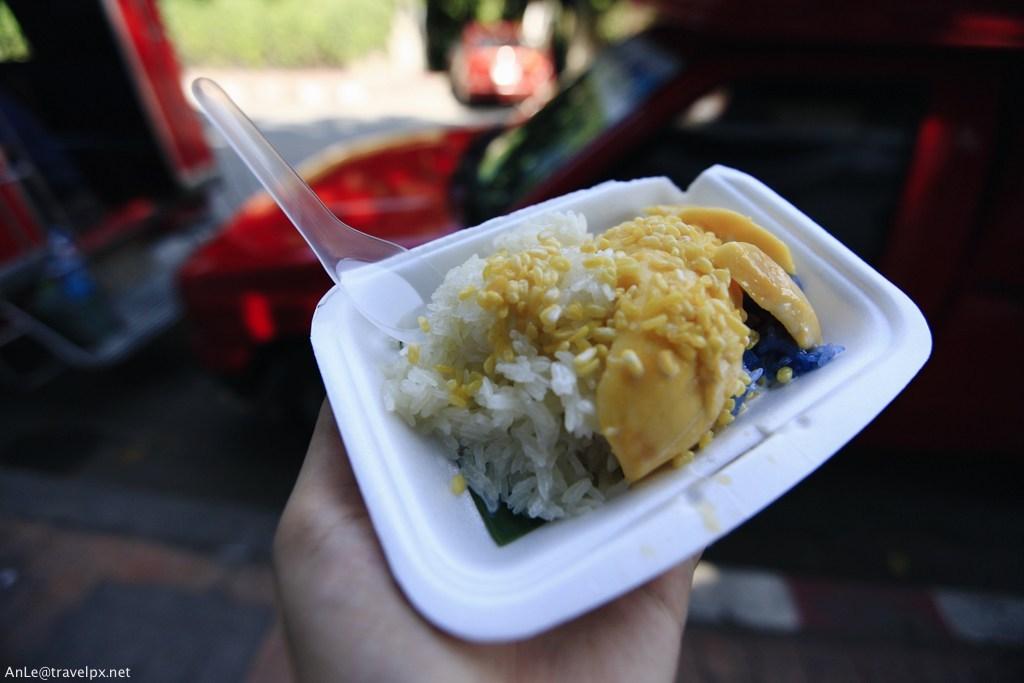 mango sticky rice chiang mai (1)