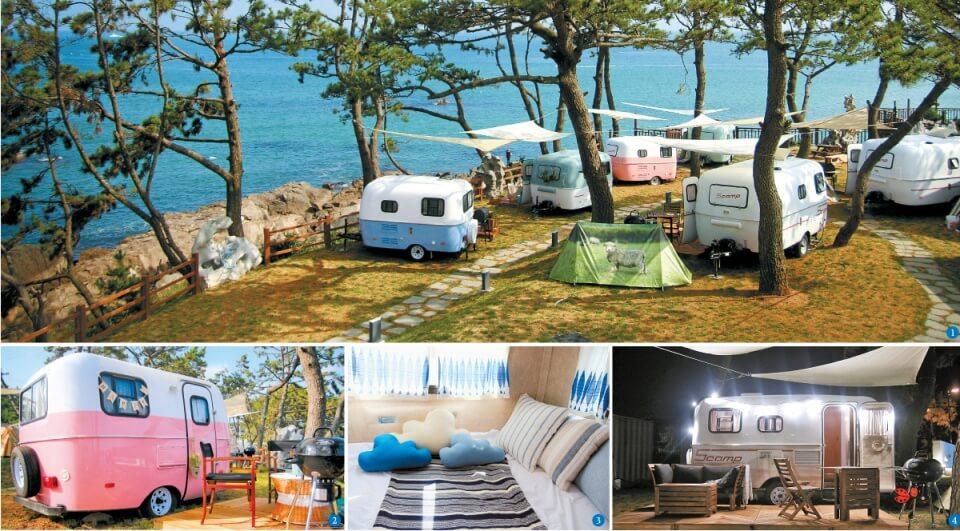 Busan camping,glamping in busan,the moving camping busan,the moving caravan busan