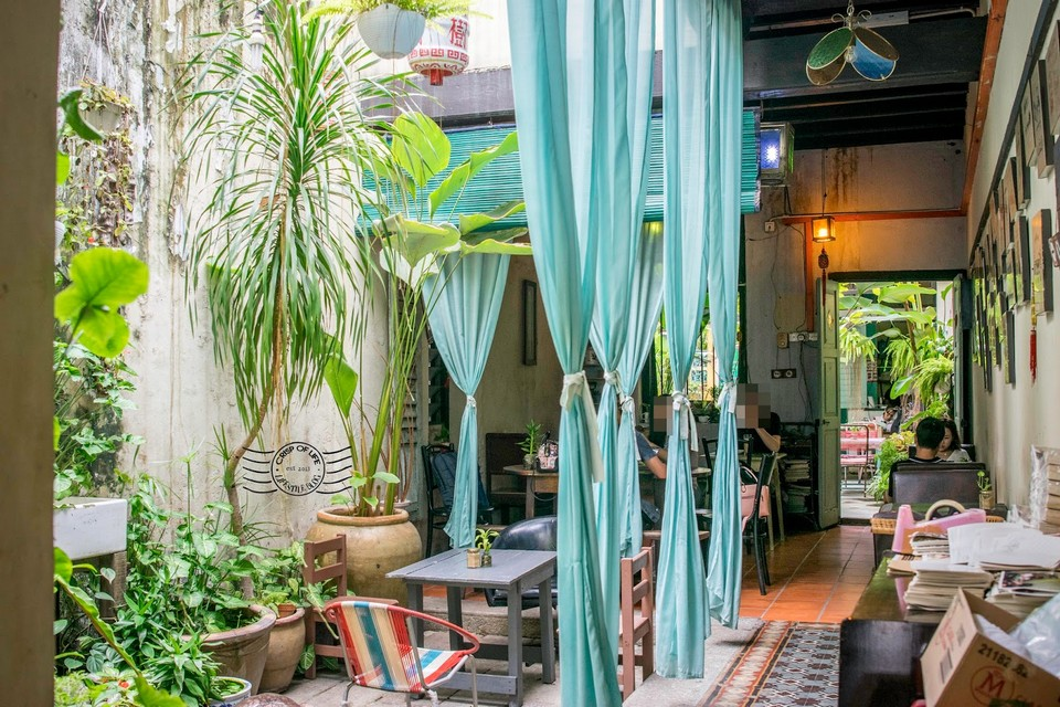 Moon Tree 47,what to do in penang in 1 day (1)