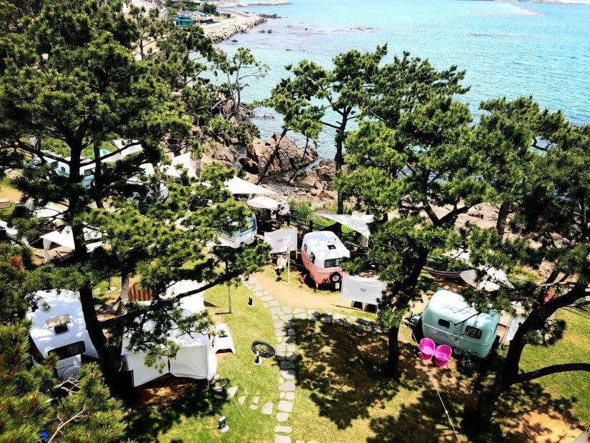 Busan camping