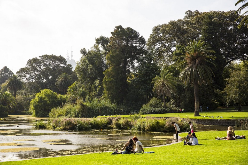 yarra river picnic barbecue spot (2)