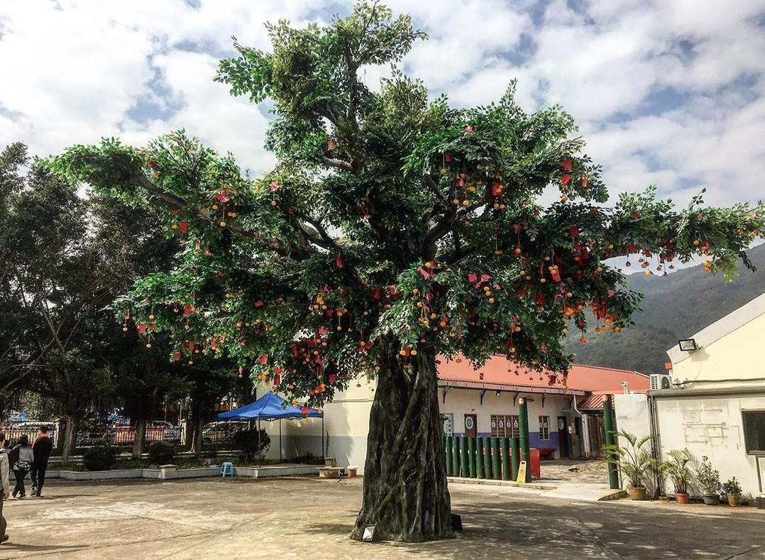 Lam Tsuen Wishing Tree (1)