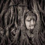 Ayutthaya travel blog — The fullest Ayutthaya travel guide & How to visit Ayutthaya in a day?
