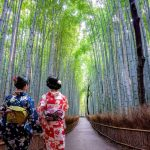 Kyoto 2 day itinerary blog — How to spend 48 hours in Kyoto & What to do in Kyoto in 2 days?