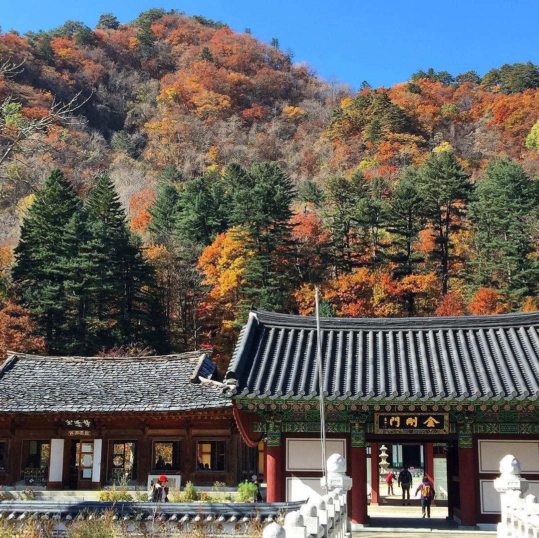 Baekdamsa