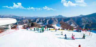 Gangwon skiing