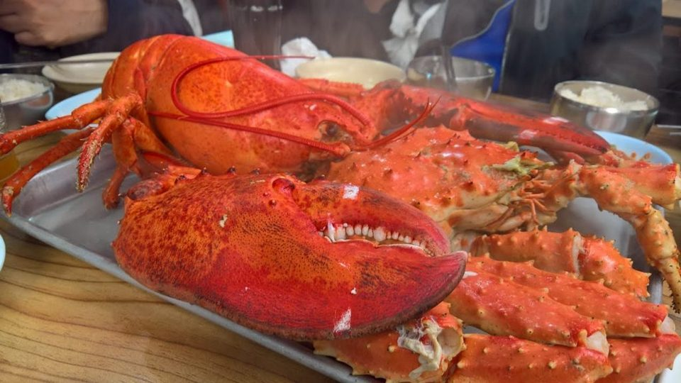 A King Crab 1,4kg on the plate