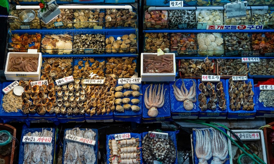 Live seafood for sale