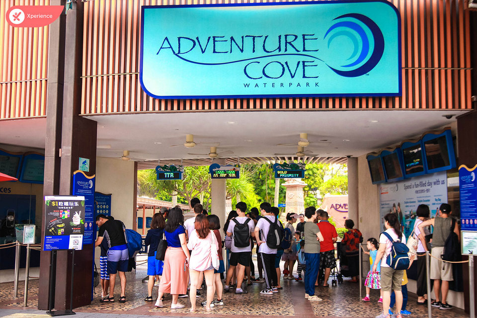 | What's Adventure Cove price