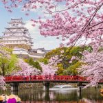 Cherry blossom Osaka 2020 forecast — 13 best places to see sakura in Osaka & best place to see cherry blossoms in Osaka