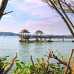 Pulau Ubin blog — The fullest Pulau Ubin travel guide & suggested perfect Pulau Ubin one day trip