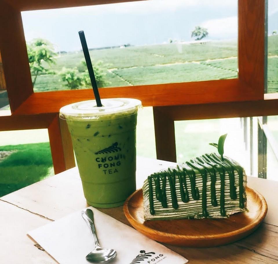 Choui Fong tea plantations, Chiang Rai, Thailand