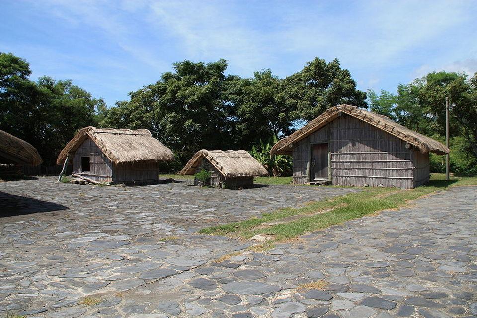 Amis folk's houses