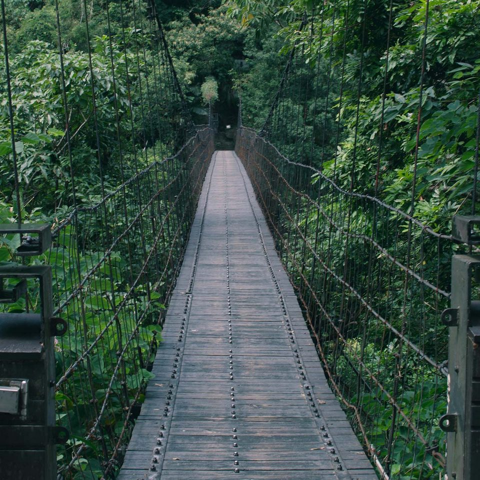 Suspension bridge up to Eternal Spring Shrine