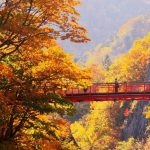 Hokkaido autumn itinerary blog — What to do & suggested Hokkaido 9 days itinerary autumn