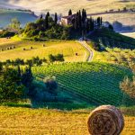 Tuscany travel blog — The fullest Tuscany travel guide for first-timers